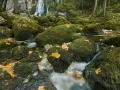 18-10-19_Berchtesgaden_037